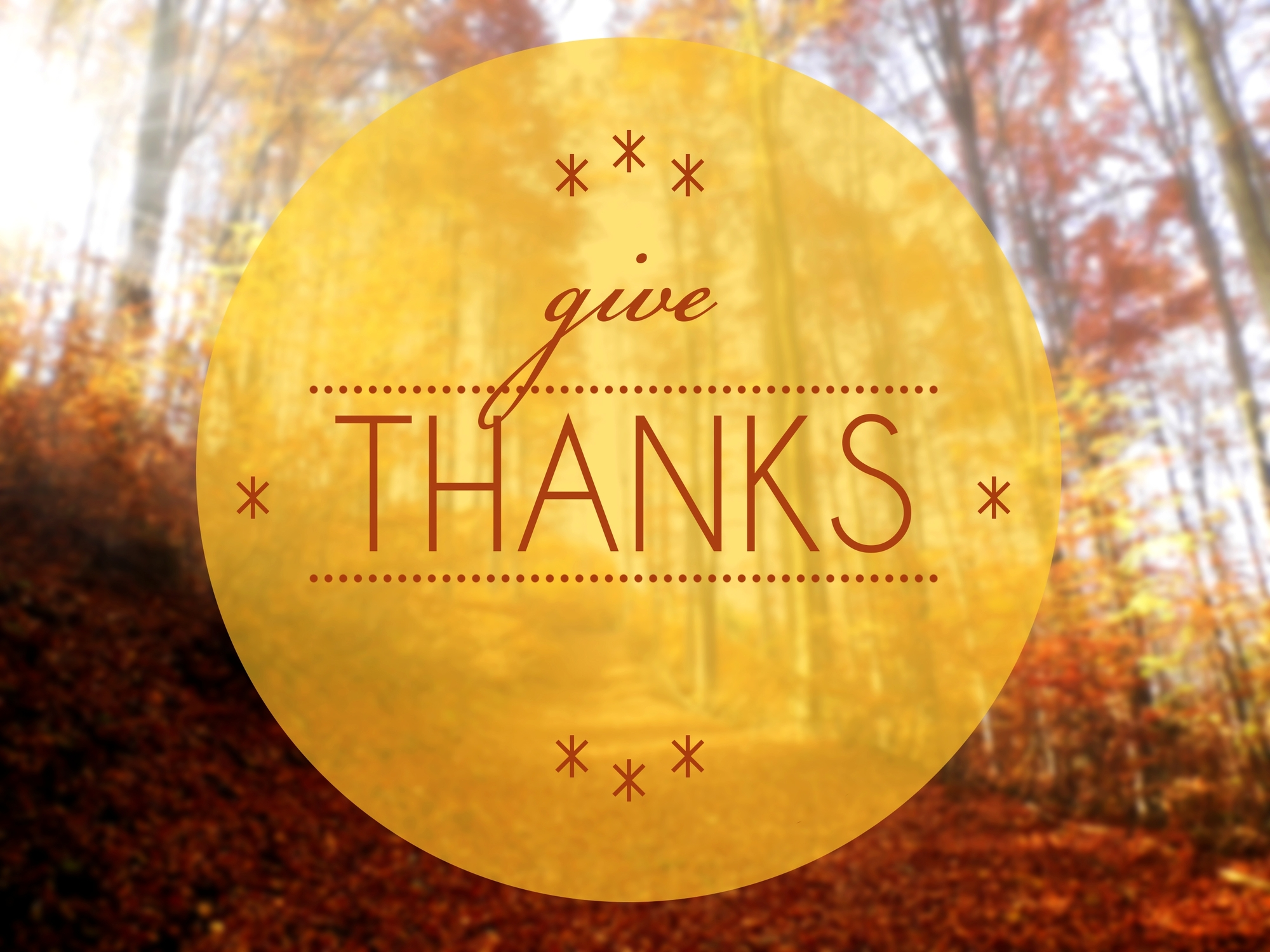 wording 'Give Thanks: background of the fall woods