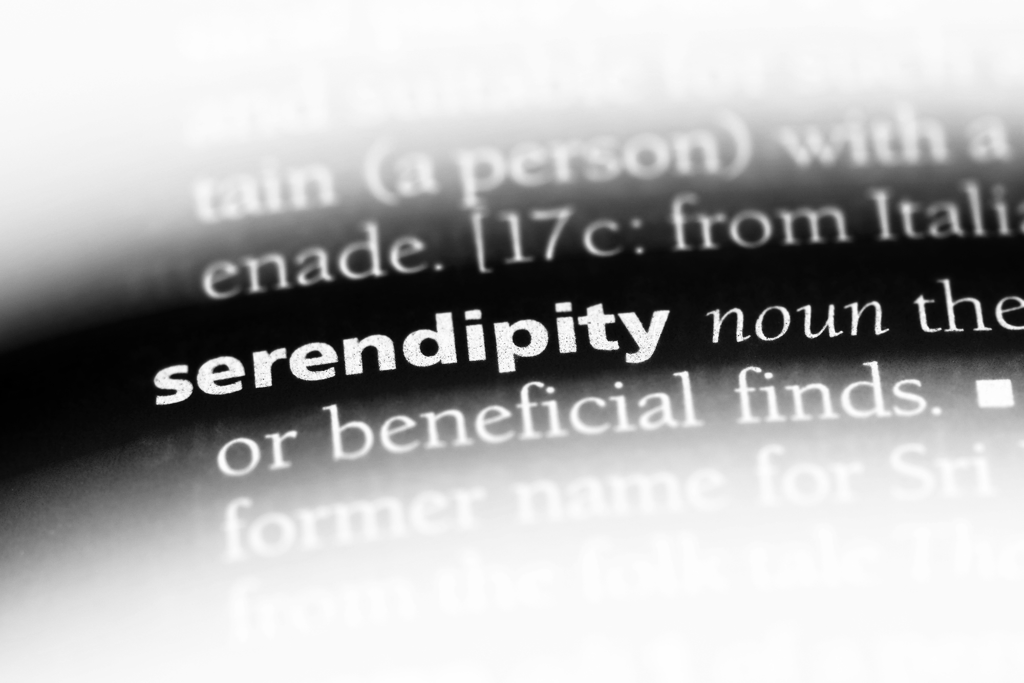 serendipity and business